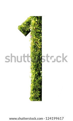 Number 1 green leaves on white background - stock photo