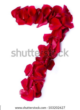 number 7 made from red petals rose - stock photo