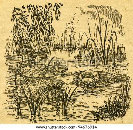 """Nuphar lutea - Yellow Water-lily - an illustration from the book """"In the wake of Robinson Crusoe"""", Moscow, USSR, 1946. Artist Petr Pastukhov - stock photo"""