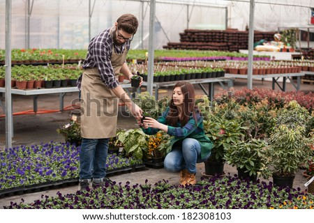 Nursery worker greenhouse - stock photo