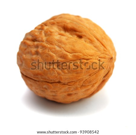 Nut on a white background - stock photo