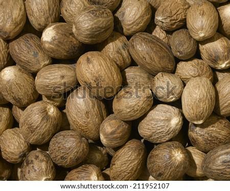 Nutmeg full frame - stock photo