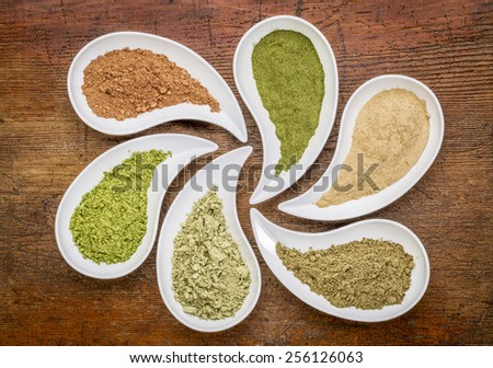 nutrition supplement abstract - a top view of teardrop shaped bowls of various powders - cacao, wheatgrass, maca root, hemp protein, kelp, moringa leaf - stock photo