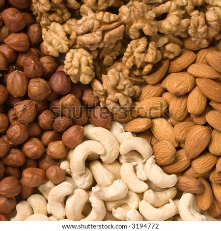 Nuts (almons, cashews, walnuts and filbers) - stock photo