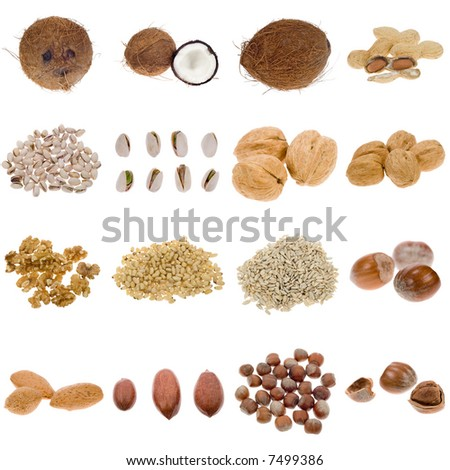 nuts and seeds collection isolated on a white background, all pieces individually photographed in studio and no shade so its easy to select. - stock photo