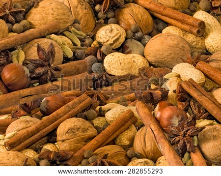 nuts and spices closeup - stock photo
