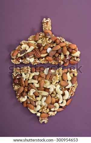 Nuts concept, including brazil nuts, cashews, walnuts, pecans, almonds and hazelnuts in shape of acorn outline on modern maroon table background.  - stock photo