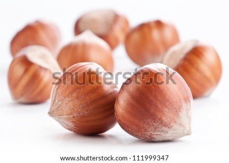 Nuts filberts isolated on white background. - stock photo
