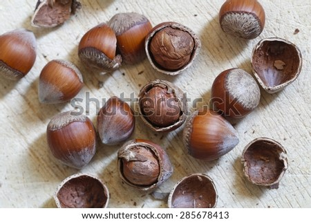 Nuts, hazelnuts. Disorderly numerous ripe brown hazelnuts. - stock photo