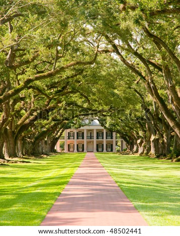 Oak Alley Plantation, hanging oak tree branches and brick path - stock photo