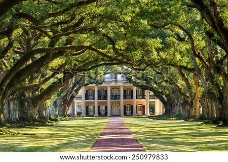 Oak Alley Plantation, Louisiana - stock photo