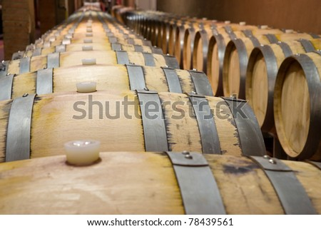Oak barrels in which the wine matures - stock photo