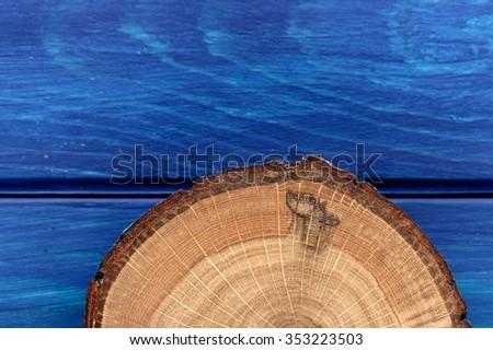 Oak split with bark on navy blue wooden table - stock photo