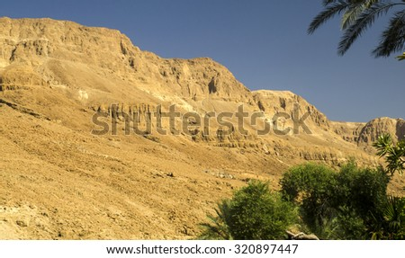 Oasis with palm trees in Judean desert, Yellow and orange rocks and mountains - stock photo