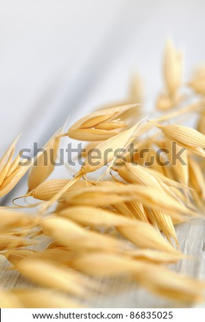 Oat wheat on a wooden table, soft focus - stock photo