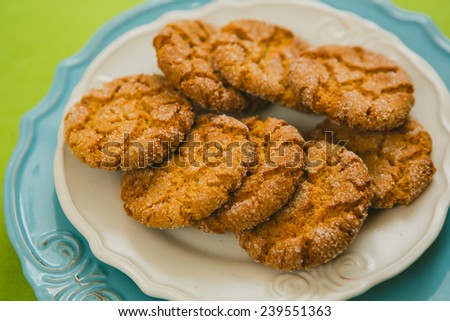 Oatmeal Cookies with Warm Fall Colors. selective focus - stock photo