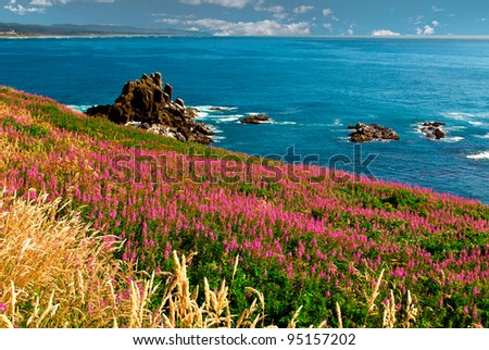 Ocean and coastal landscapes - stock photo