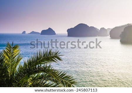 ocean and rocks in distance, silhouette of palm tree in the forefront, purple sunset - stock photo