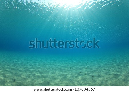 Ocean Background Photo - stock photo