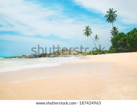 Ocean beach waves panorama against rock and palms in sunny day - stock photo