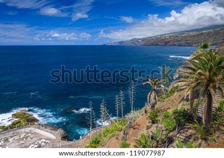 Ocean coast view palm tree clouds blue sky, Puerto de la Cruz, Tenerife, Canary Islands - stock photo