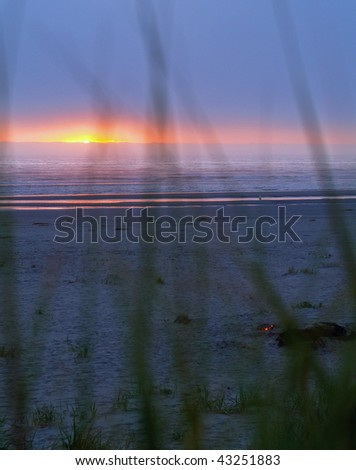 Ocean Sunset silhouetted with beach grass in the foreground - stock photo