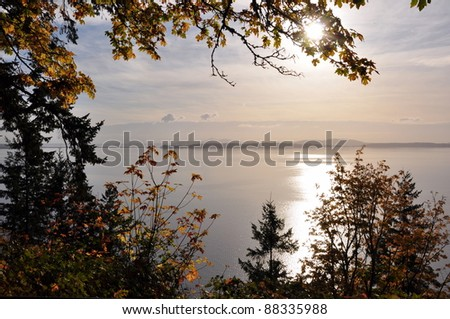 Ocean view through trees turning color in the Fall - stock photo