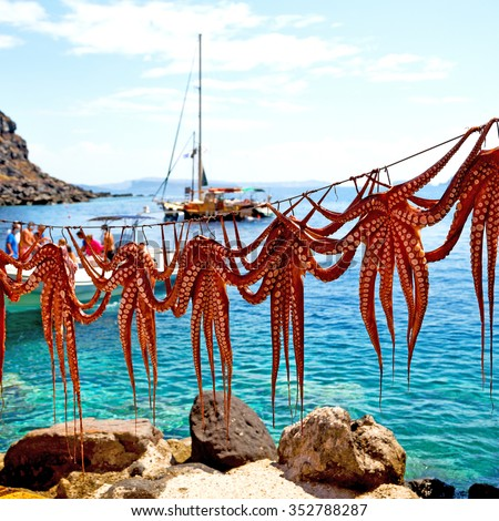 octopus drying  in the sun europe greece santorini and light - stock photo
