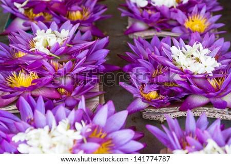 Offering flowers, Sri Lanka - stock photo