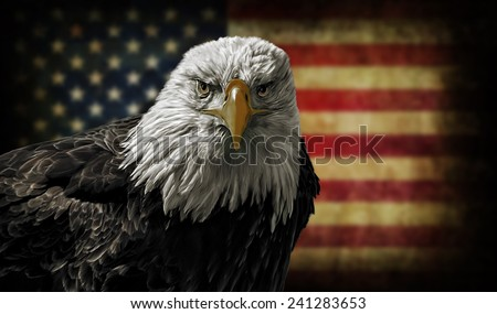 Oil painting of a majestic Bald Eagle against a photo of a battle distressed American Flag. - stock photo