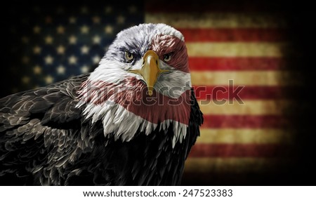Oil painting of a majestic Bald Eagle with the USA flag across it's face against a photo of a blurry, battle distressed American Flag. - stock photo
