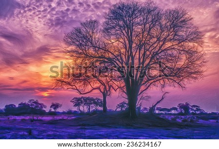 Oil painting of African acacia tree at sunset - stock photo