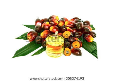 Oil plam fruit with  oil on white background - stock photo