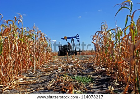 Oil well with seen through the corn field in Serbia - stock photo