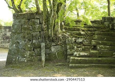 oka Castle Ruins - stock photo