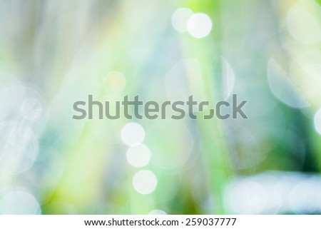 okeh blurry natural abstract green background - stock photo