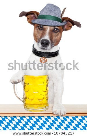 oktoberfest dog with bavarian beer mug - stock photo