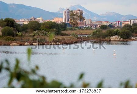 Olbia cityscape - stock photo