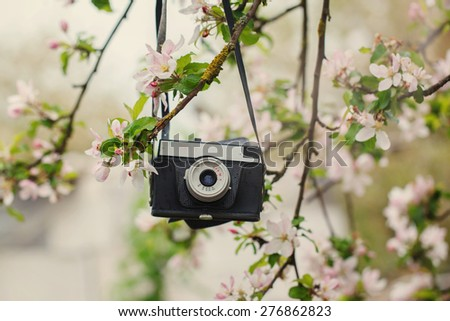 Old a retro the camera hangs on an apple-tree in sunny spring day - stock photo