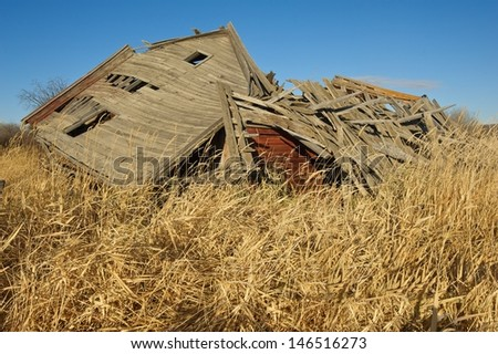 Old abandoned barn collapsed in a field of tall dry dead grass - stock photo