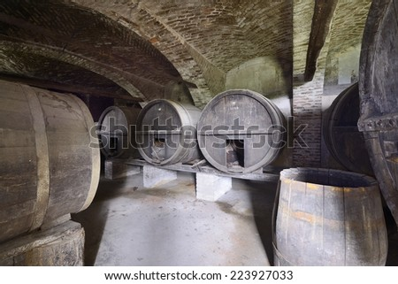 old abandoned cellar - stock photo