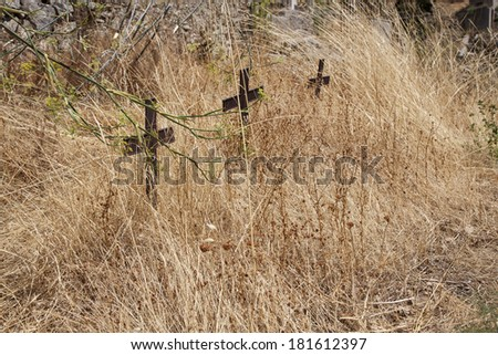 Old abandoned tombs in ancient cemetery - stock photo