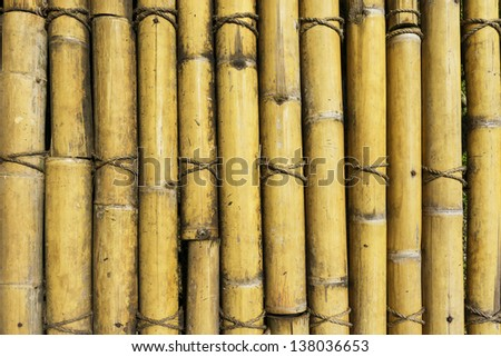 Old and weathered bamboo sticks - stock photo