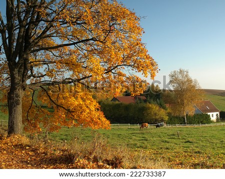 Old autumn farm - stock photo