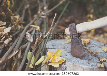 Old ax stuck in the stump - stock photo