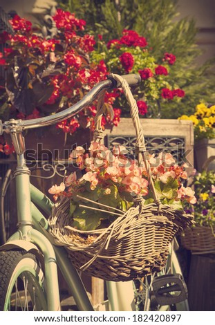 Old bicycle with a bucket of colorful flowers - stock photo