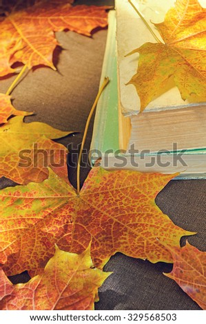 Old books among the dry yellow maple leaves and bright sunlight - autumn still life in vintage tones.  Selective focus at the book's spine - shallow depth of field - stock photo
