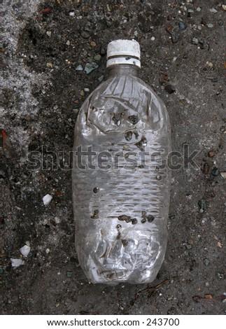 Old Bottle - stock photo