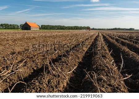 Old brick barn with an orange tiled roof in a large field with dead potato tops on the ridges of clay. It is autumn and the harvest of potatoes has already started at the back in the field. - stock photo
