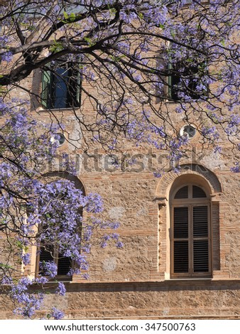 old brick house with blue flower tree - stock photo